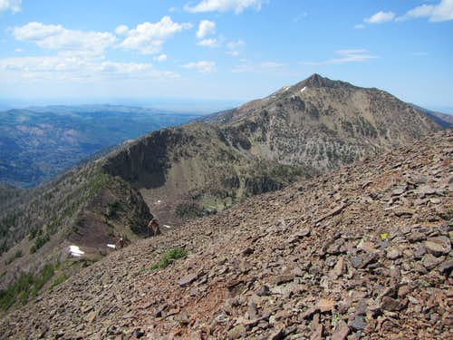 Jarbidge Mts.12