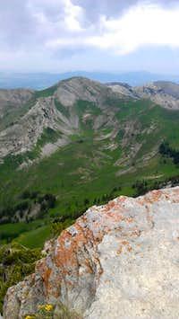 Views North from Naomi