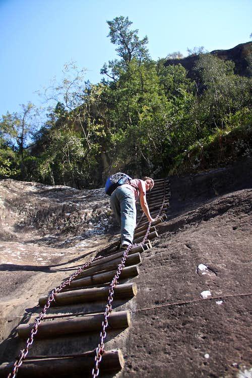 Chain Ladders