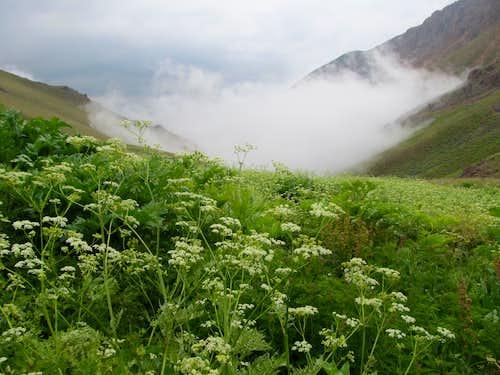 Shirkamar Valley