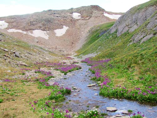 Stream on the surface of the plateau