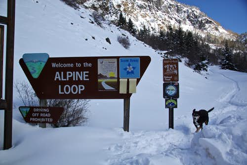 Alpine road in winter