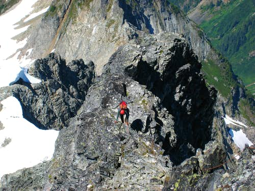 Dane following on the ridge crest