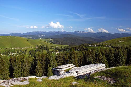 On the southern slopes of Monte Fior
