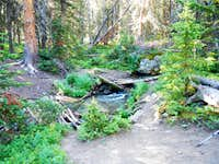 South Fork of Spread Creek