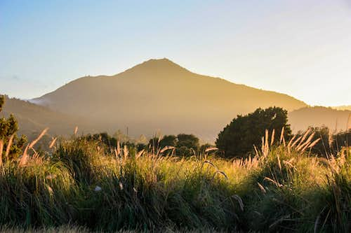 Mt. Tam from Corte Madera Marsh