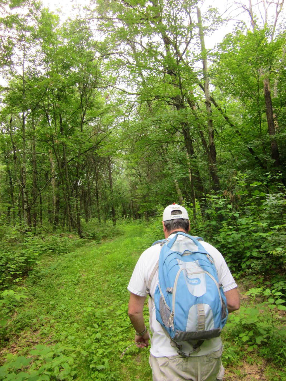 Buggy, Muggy Trail