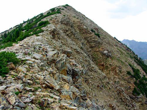 Sugarloaf Peak
