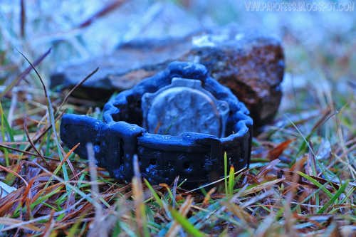 Frozen watch