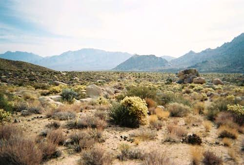 The desert terrain in...