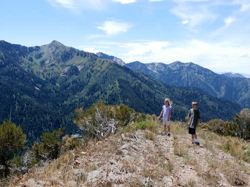 Millvue Peak