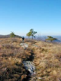Appalachian Trail (South Bound)
