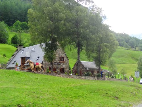 House and horses
