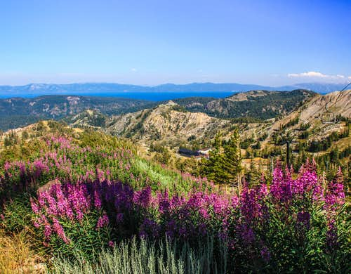 Toward Lake Tahoe from the Siberia Ridge Road