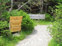 Long Trail to summit of Mount Mansfield
