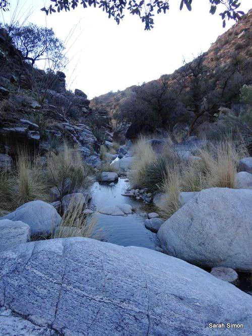 Cool water low in canyon
