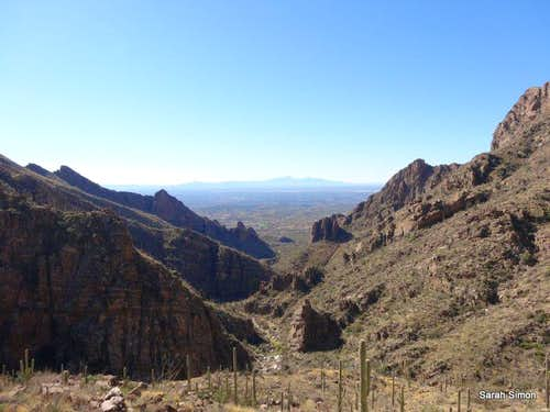 Looking down Ventana Canyon
