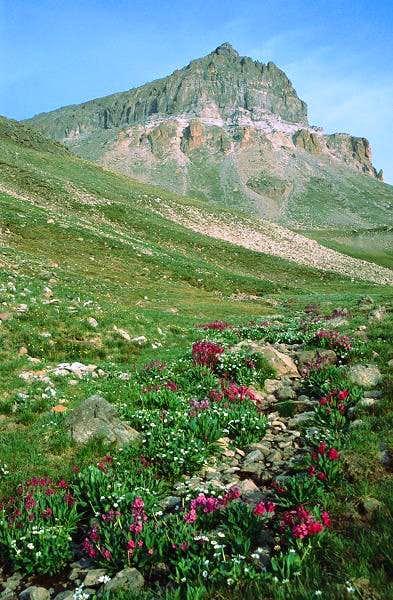 Uncompahgre Peak from the...