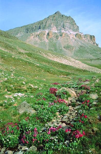 Uncompahgre Peak from the...