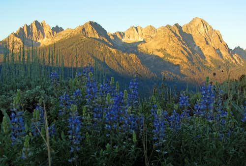 Sawtooth alpenglow & wildflowers