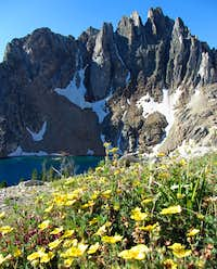 Ridge, lake, & wildflowers