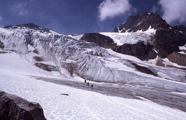 The Ochsentaler glacier is...