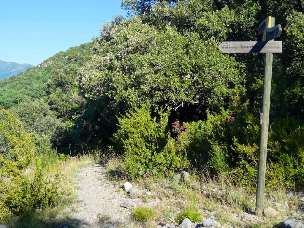 Trail under Os Pozos
