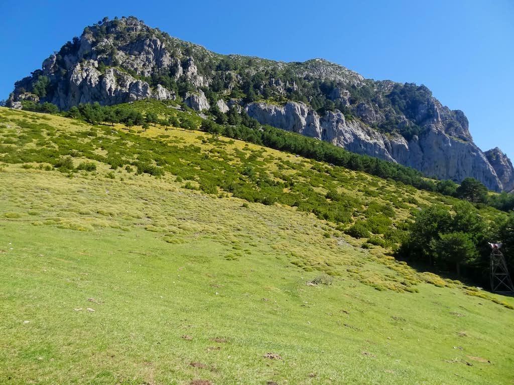 View in La Collada