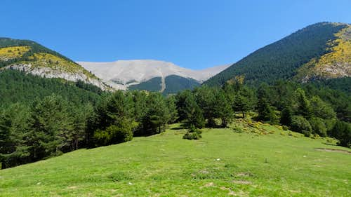 Green panorama at Refugio de Cullibert