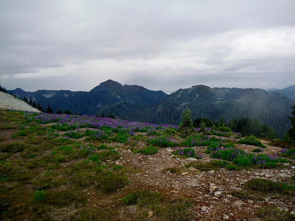 Looking down Carbon Ridge