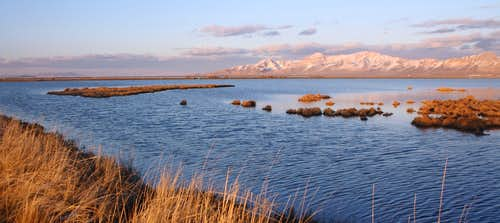 Stansbury Island in winter - from Timpie Springs WMA