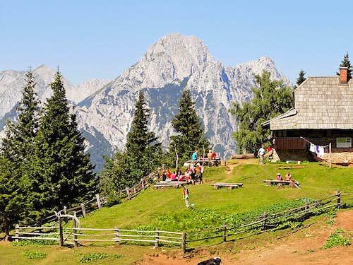 Korosica alpine meadow
