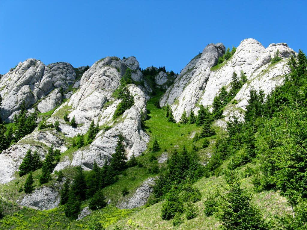 Zăganu cliffs