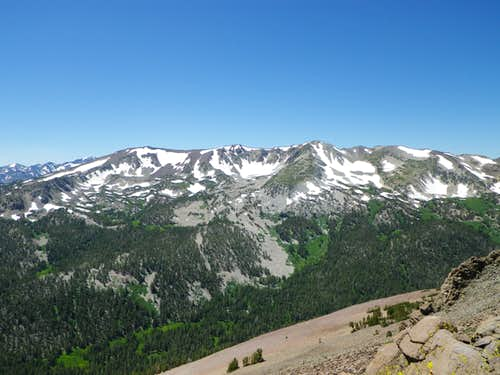 White Mountain  (Sonora Pass)