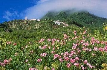 View towards Mount Scenery
