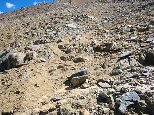 Scree Trail to Tom s Summit