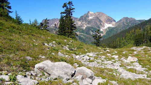 Boulder Strewn Meadow and Mt Anderson
