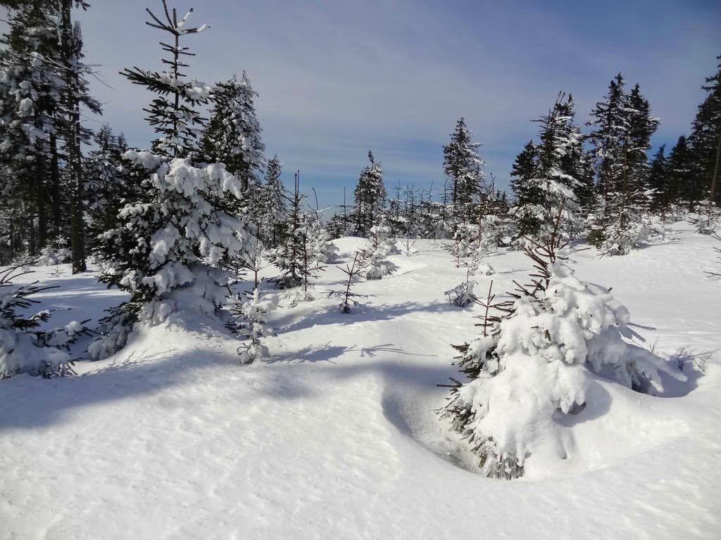 Undulating snow
