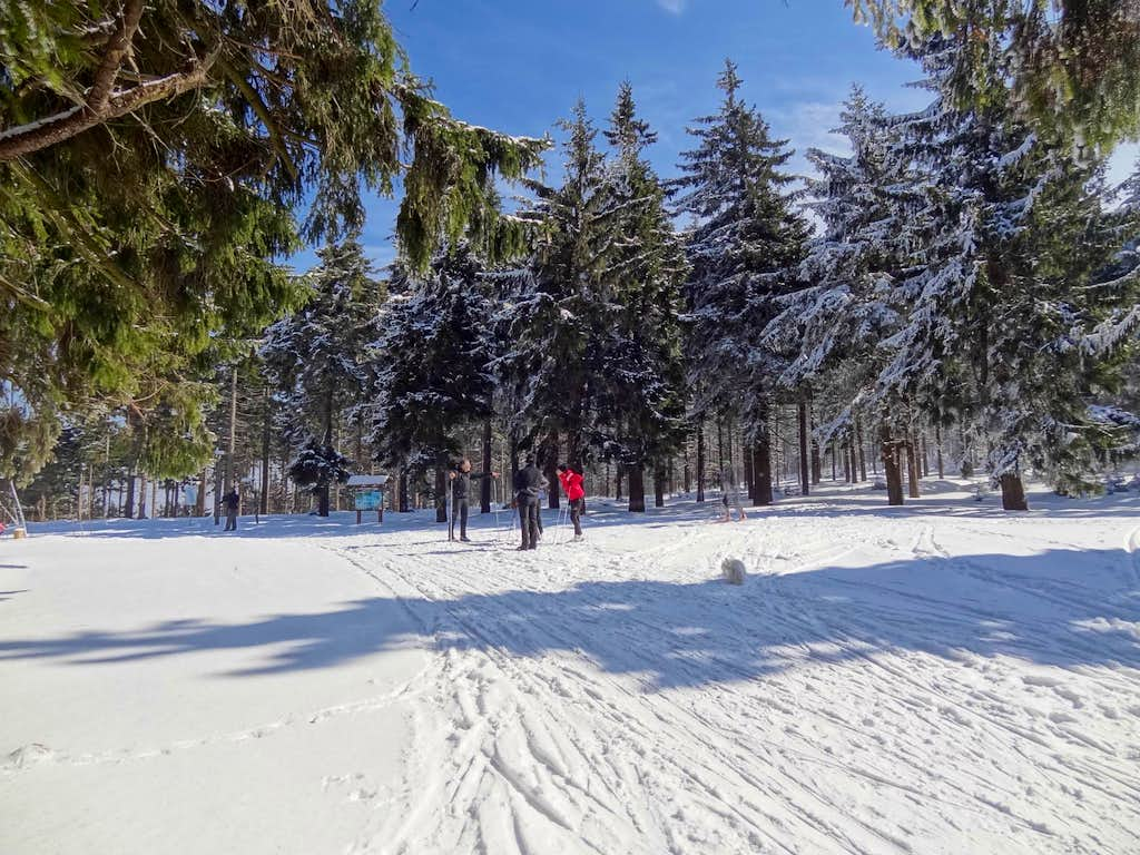 Brand new cross country skiing paths