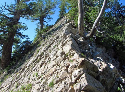 Mount Raymond scramble