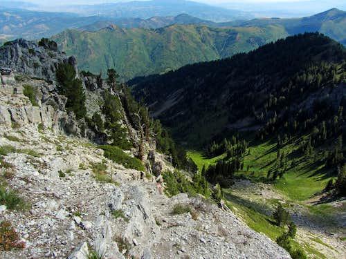 Gobbler Knob summit