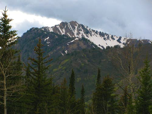 Mount Raymond from Big Cottonwood Canyon