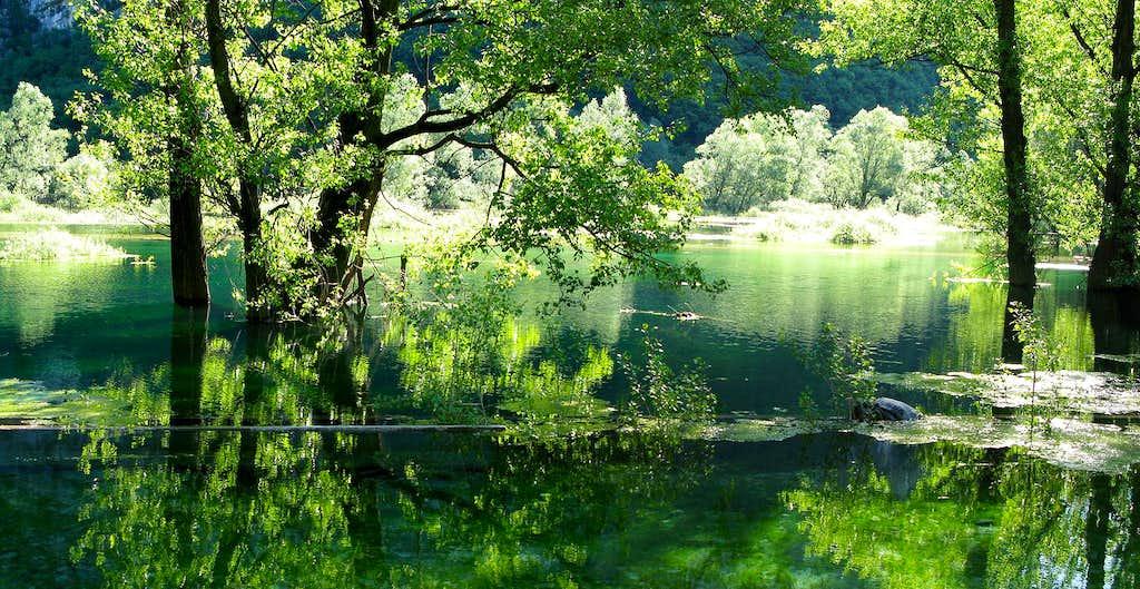 Biotope Lake Loppio