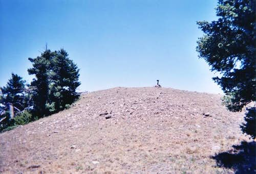 The grassy summit of Carrizo...