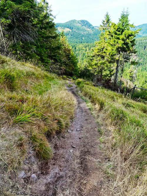 Ruprechtický Špičák steep trail