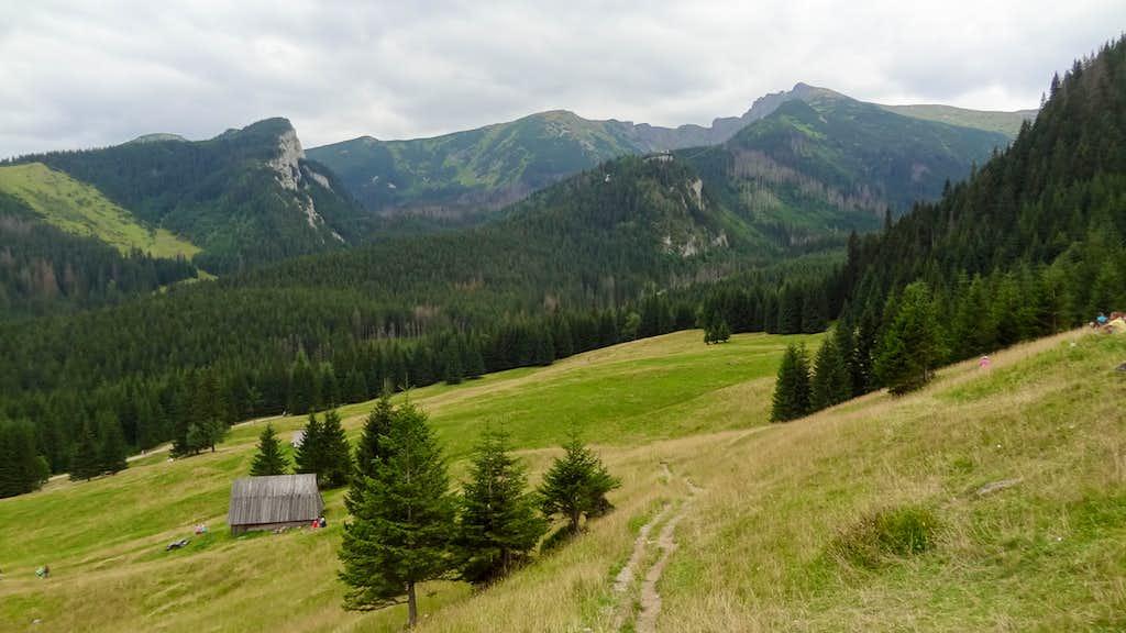 Upper border of Hala Kondratowa