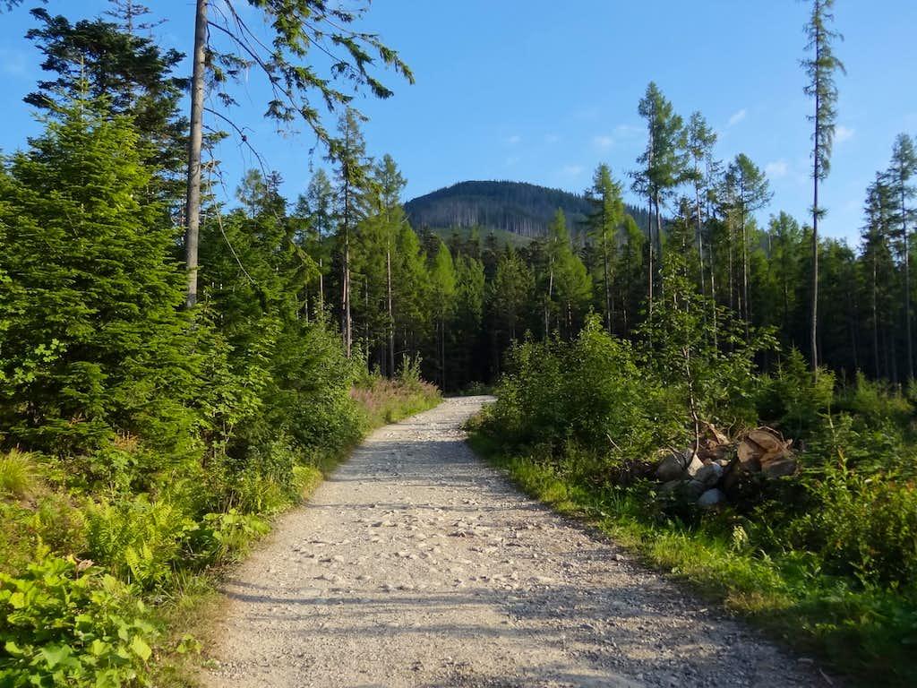 Trailhead near Biela Voda