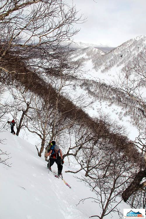 Bakening (2278 m) - skinning up via trees