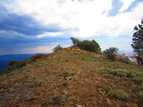 The small knoll just east of the tower which is probably the wilderness area highpoint