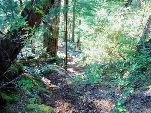 More of the steep trail